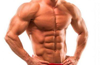 Как нарастить сухую мышечную массу